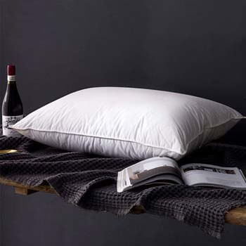 8. PALAWRAN Natural Goose Down and Feather Pillow Queen Size